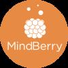 logo-mindberry